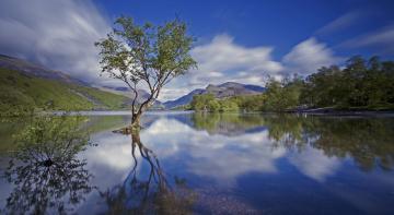 Картинка природа реки озера облака дерево горы река