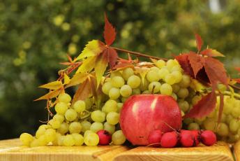 обоя еда, фрукты,  ягоды, виноград, кисть, спелый, листья, яблоко