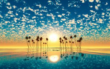 обоя разное, компьютерный дизайн, вода, солнце, закат, отражение, пальмы, остров