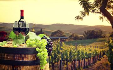 Картинка еда напитки +вино вино бочка виноград