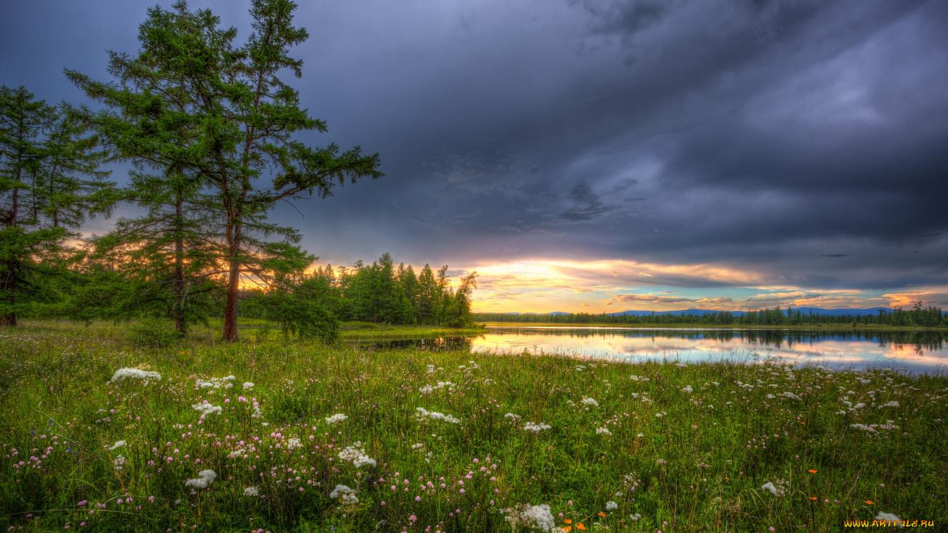 Облака, трава, цветы, озеро  № 1963072 без смс