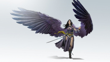 обоя фэнтези, ангелы, арт, воин, lvl, девушка, black, planeswalker, todd, hebenstreit, fantasy, крылья, оружие