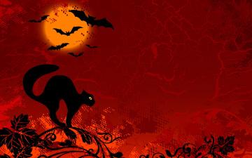 Картинка праздничные хэллоуин летучие мыши кот луна