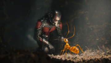Картинка кино+фильмы ant-man муравей Человек-муравей костюм супергерой комикс шлем марвел