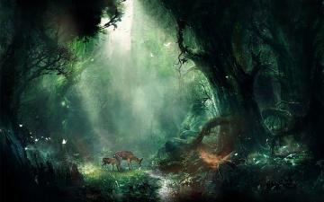 обоя джунгли, фэнтези, пейзажи, олени