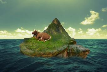 обоя юмор и приколы, остров, черепаха, море, корова