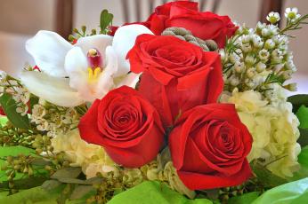 обоя цветы, букеты,  композиции, букет