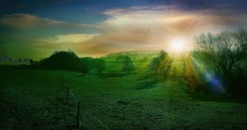 Картинка природа поля деревья холмы поле закат пейзаж