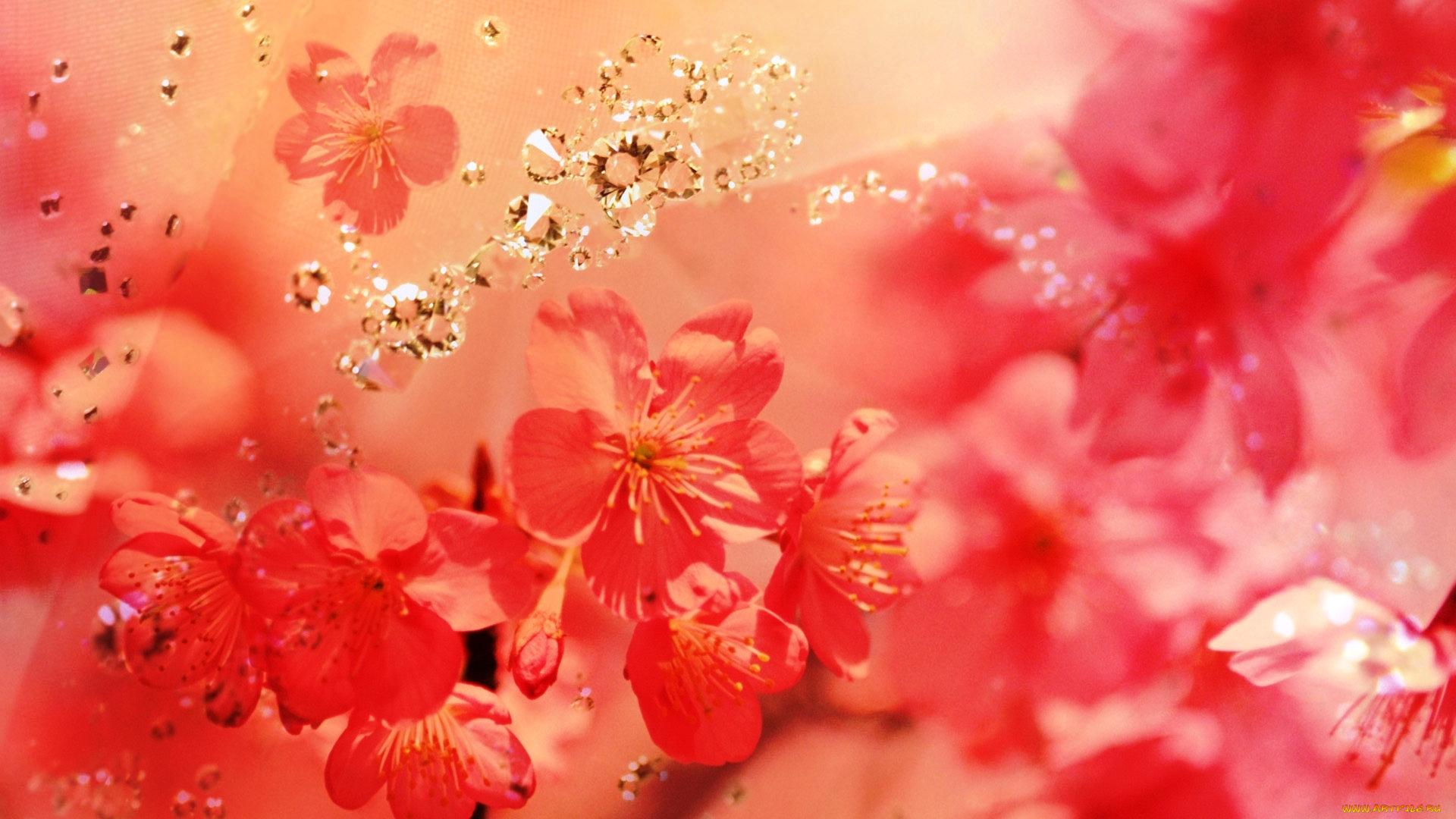 Россыпь цветов  № 2267670 бесплатно