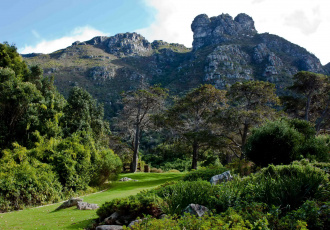 Картинка kirstenbosch national botanic garden south africa природа парк растения дорожки