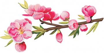обоя векторная графика, цветы , flowers, цветы, ветка