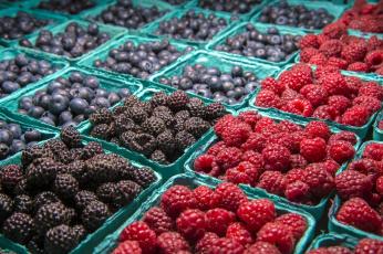 обоя еда, фрукты,  ягоды, много, ягоды, черника, ежевика, малина