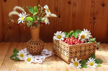 обоя еда, клубника,  земляника, лето, земляника, ягоды, цветы, полевые, ромашки, натюрморт