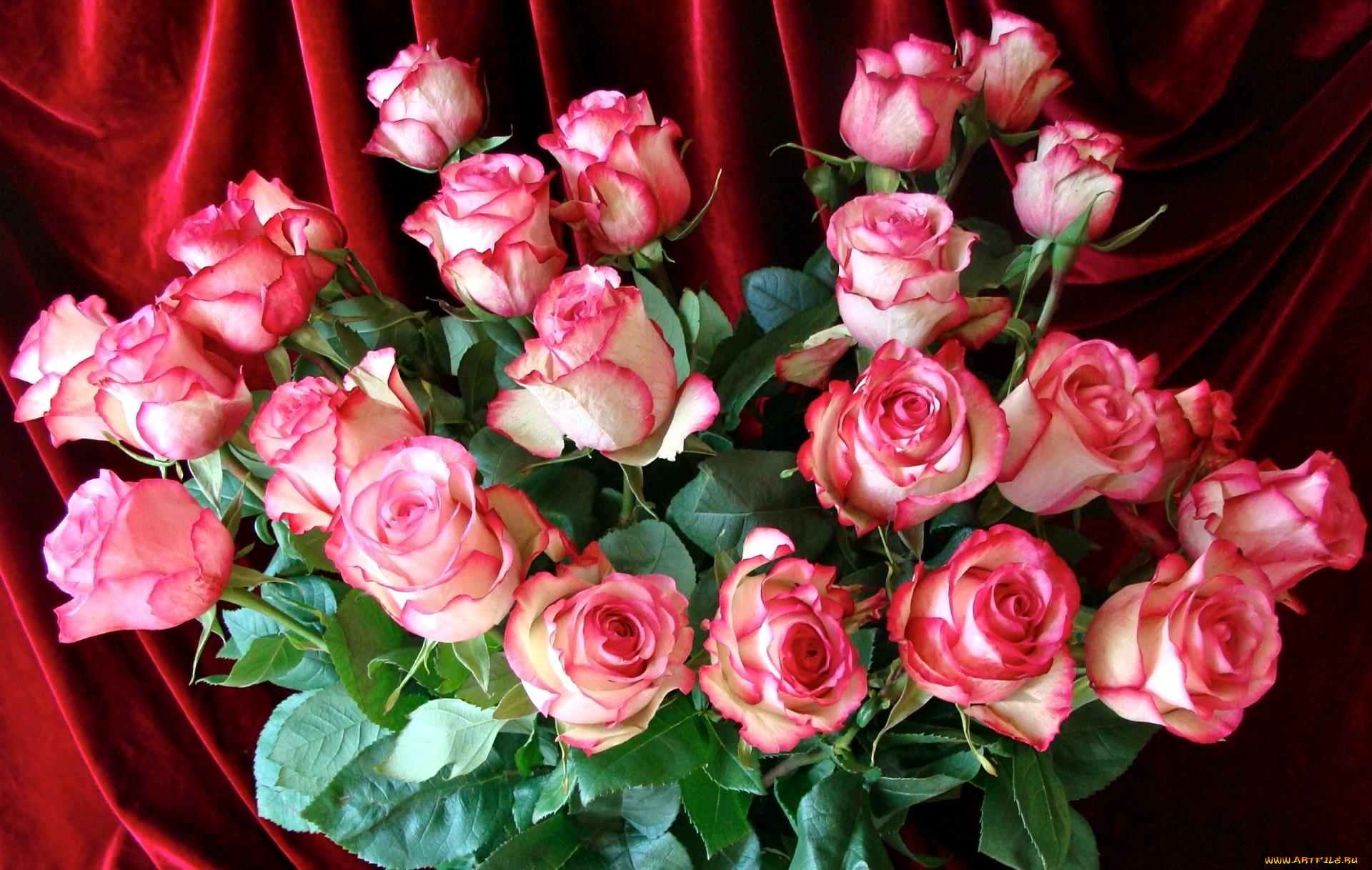 Открытки со словами цветы, картинки всякая всячина