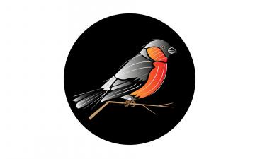 обоя рисованное, минимализм, ветка, птица, круг