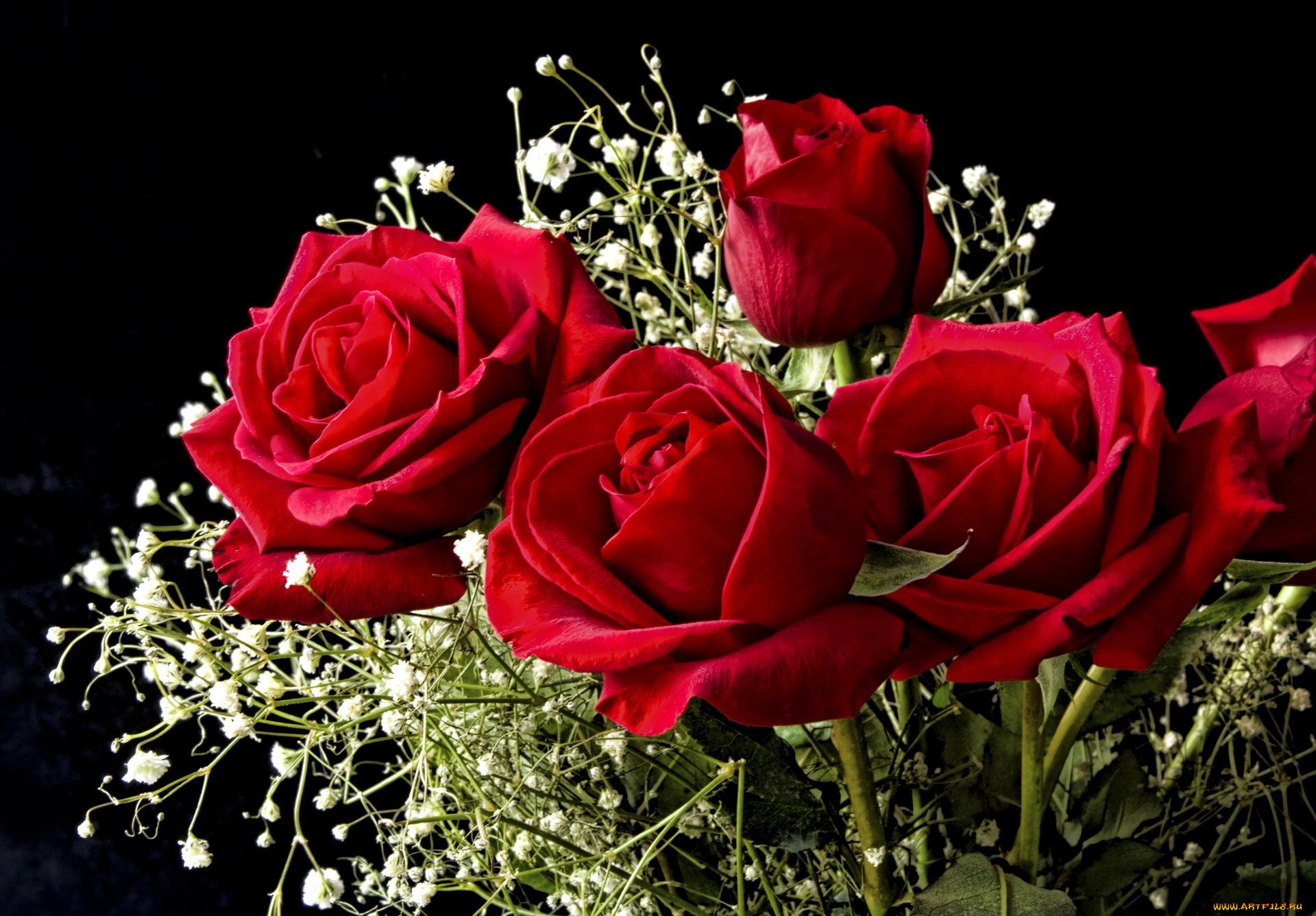 Картинки работающей, открытки мерцающие цветы красивейшие