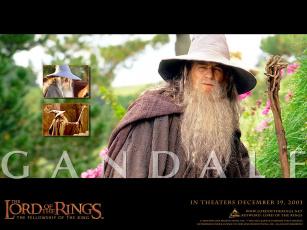 обоя гэндальф, серый, кино, фильмы, the, lord, of, rings, fellowship, ring, волшебник, маг, посох, шляпа, мантия, борода, гендальф