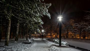 Картинка природа парк вечер фонари аллея зима