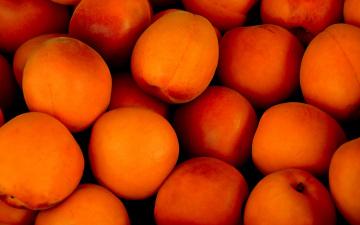 обоя еда, цитрусы, абрикосы