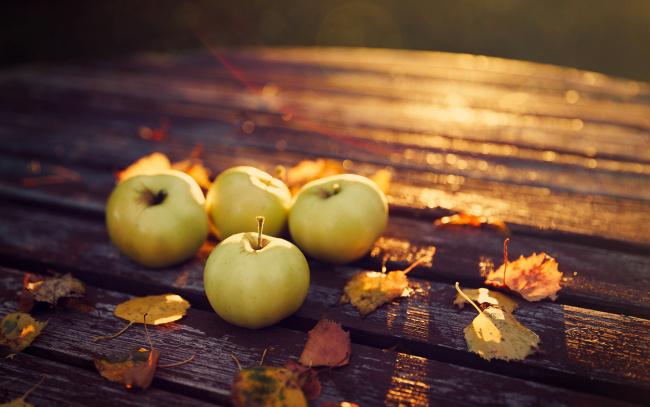 Обои картинки фото еда, Яблоки, плоды, осень, листья
