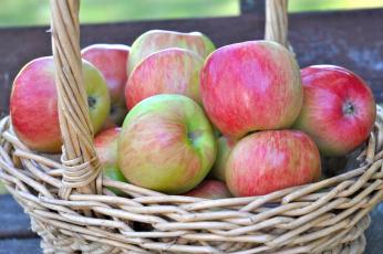обоя еда, Яблоки, томаты
