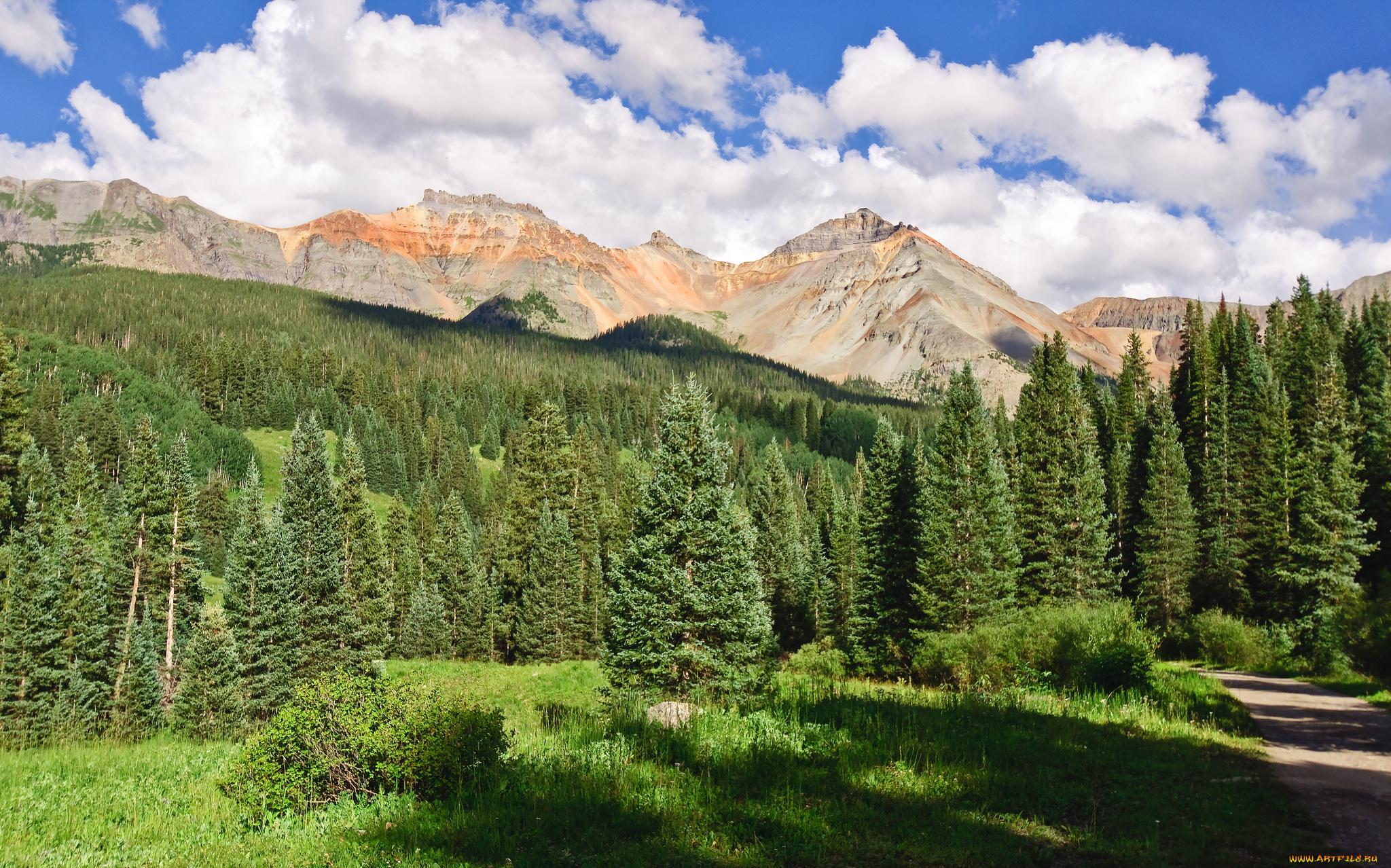 ель горы spruce mountains без смс