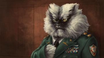 Картинка рисованные животные коты военный