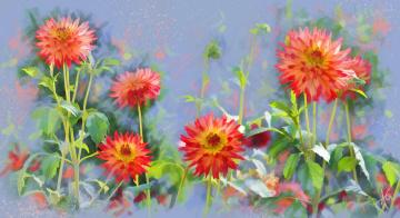 Картинка рисованное цветы георгины