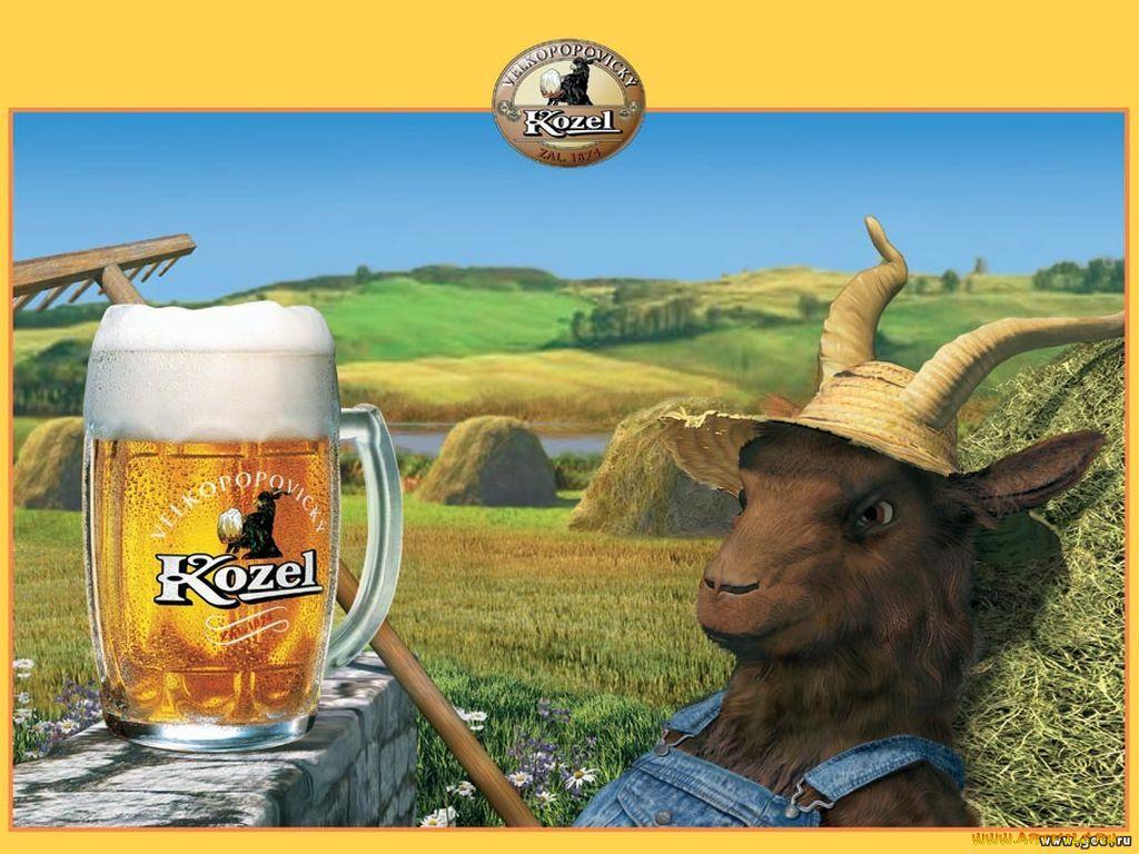 Прикольных, смешные картинки пиво козел