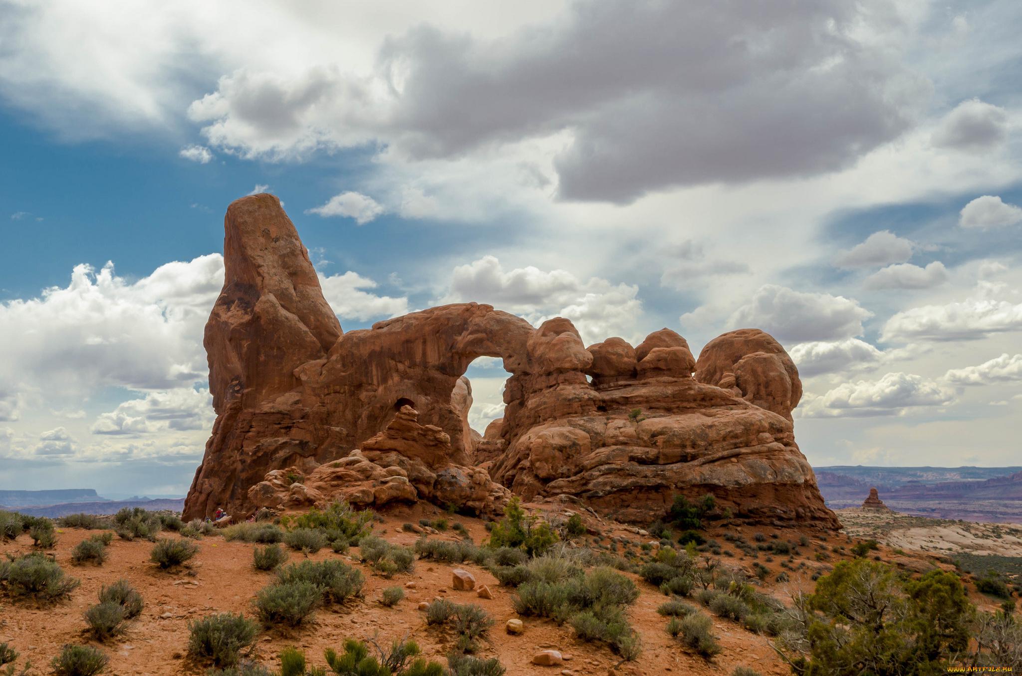 пустыня скалы растительность бесплатно