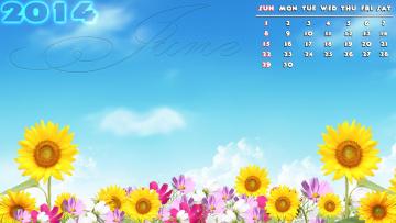 обоя календари, цветы, космея, подсолнухи
