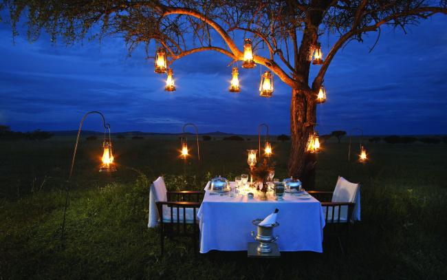 Обои картинки фото интерьер, декор,  отделка,  сервировка, дерево, лужайка, фонари, сервировка, накрытый, стол