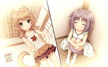 обоя аниме, nekopara, девочки