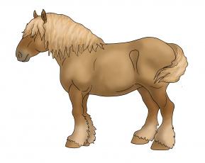 Картинка рисованные животные лошади лошадь