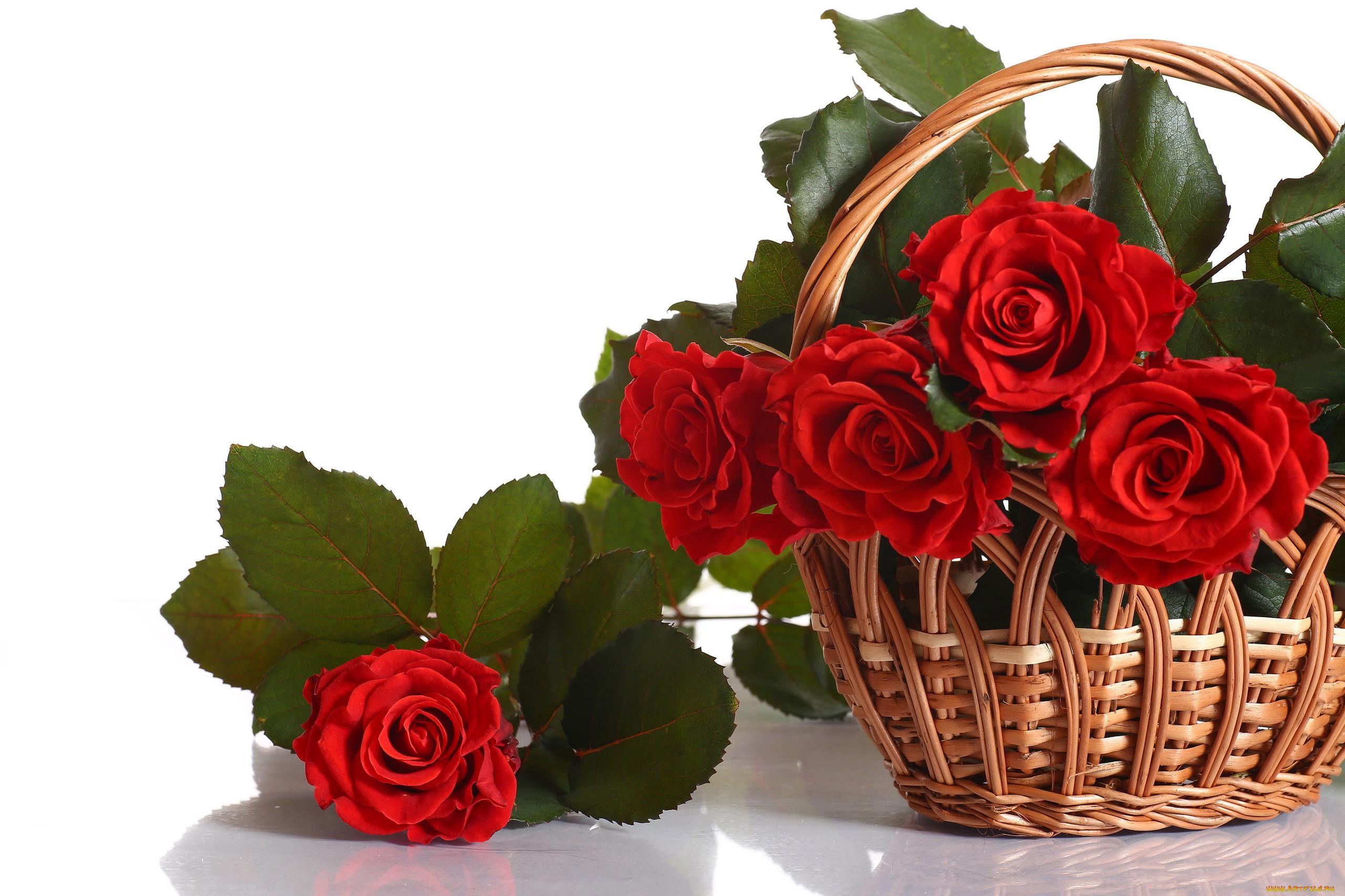 Стихами, открытки для жены цветы