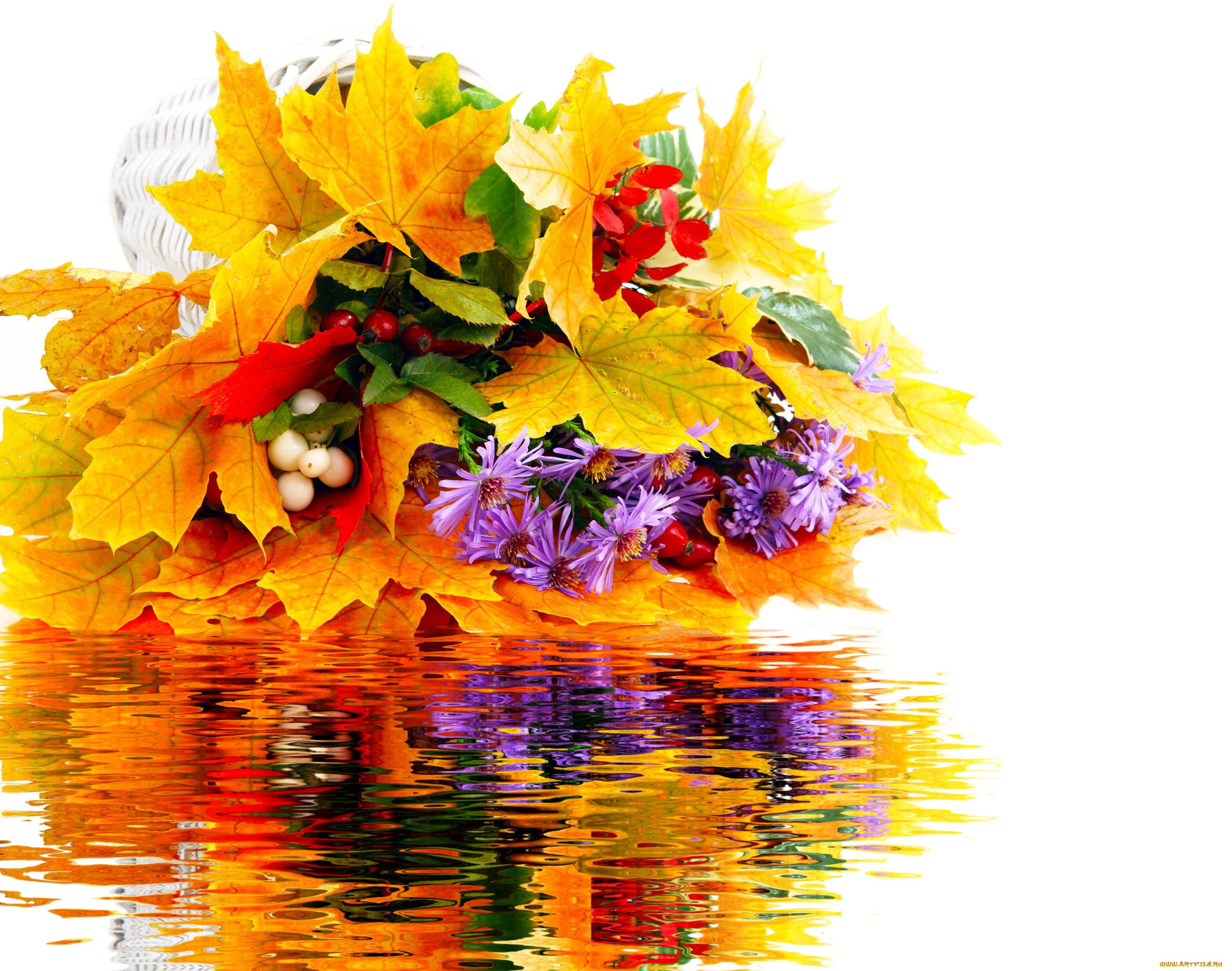 Цветы осенние открытка, блестяшки