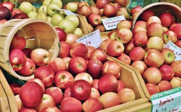 обоя еда, Яблоки, яблочки