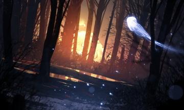 обоя фэнтези, призраки, лес, деревья, арт, свет, ночь, фантастика, медуза