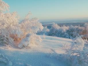 обоя разное, компьютерный дизайн, река, кусты, деревья, снег, зима