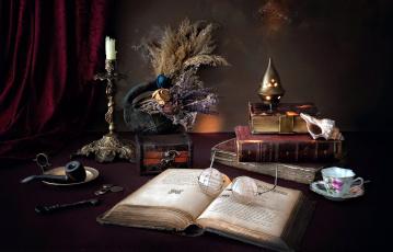 обоя разное, канцелярия,  книги, свеча, очки, книги, курительная, трубка, ракушка