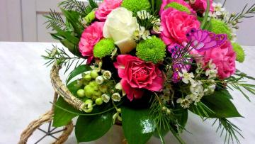 обоя цветы, букеты,  композиции, зелень, хризантемы, розы, бабочка