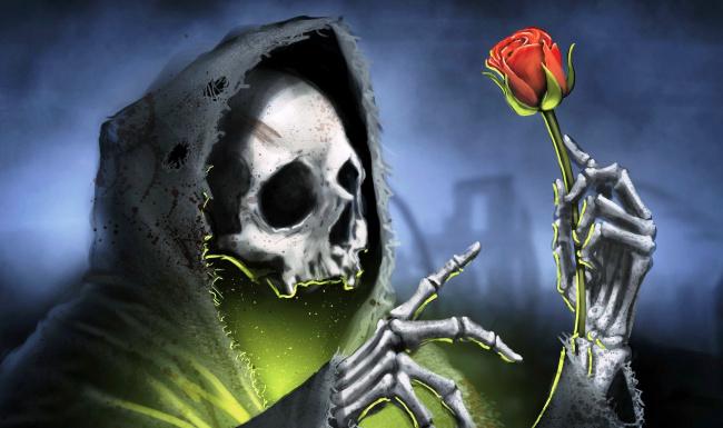 Обои картинки фото фэнтези, нежить, цветок, свет, балахон, смерть, роза