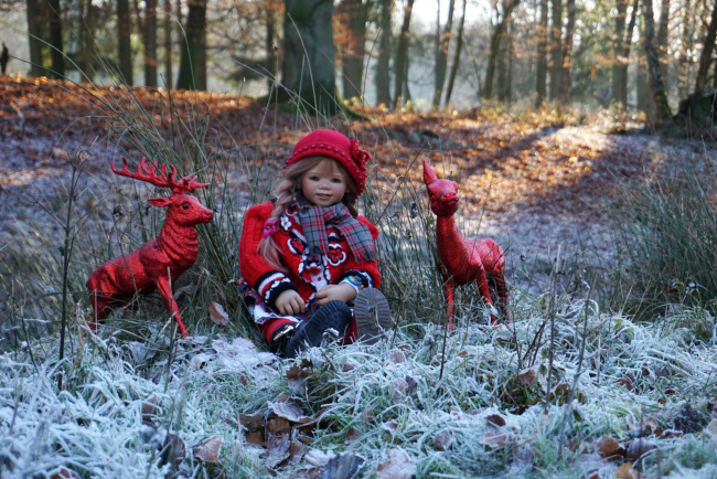 Обои картинки фото разное, игрушки, кукла, лес, осень