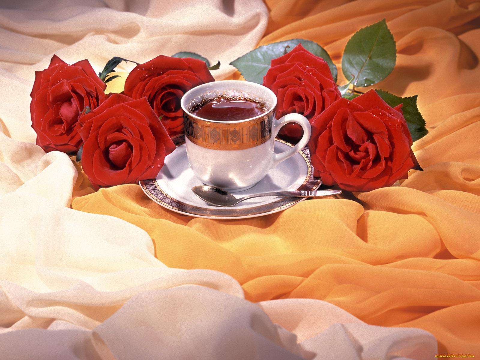 Поздравлением получением, пожелание доброго утра и удачного дня в открытках