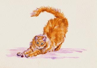 Картинка рисованное животные +коты кот потягивается акварель кошка