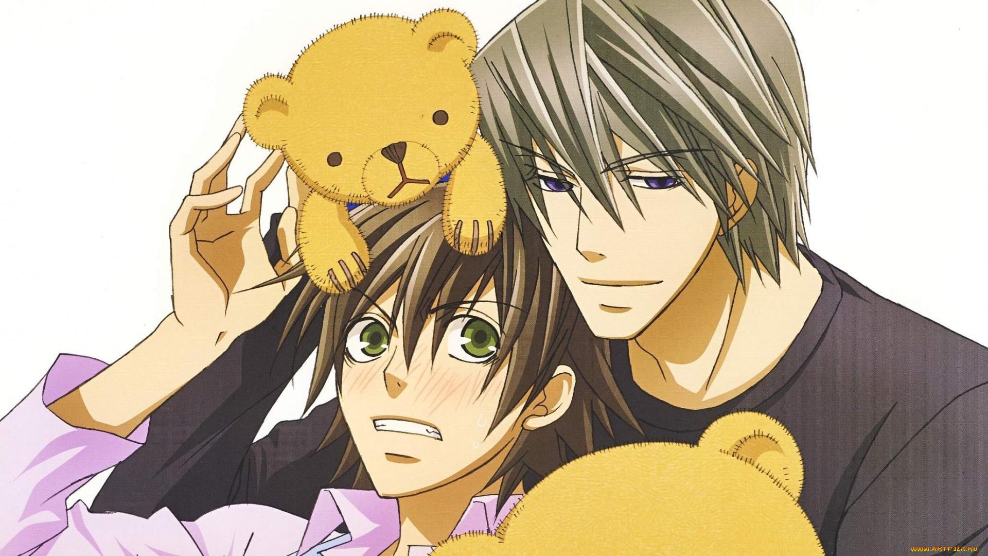 Чистая романтика [2008] (1 сезон) смотреть аниме онлайн и скачать.