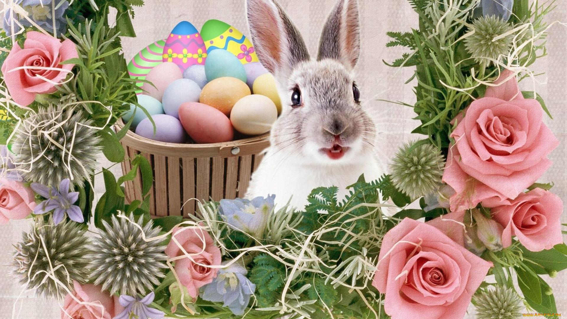 признаюсь большая поздравление кролика с пасхой полноценная современная