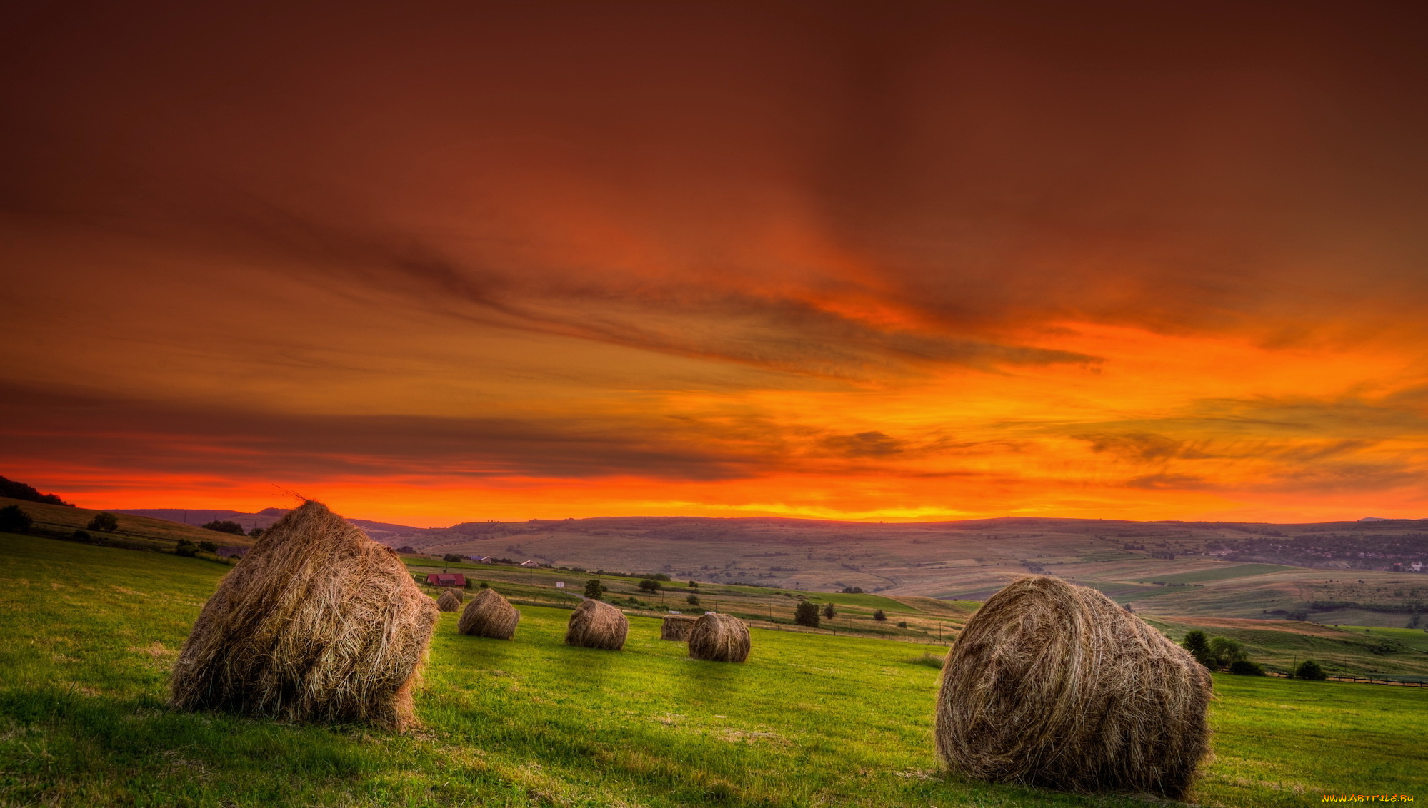 оранжевое авто дорога трава сено скачать