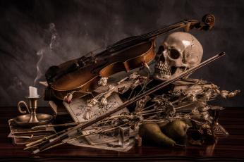 обоя музыка, -музыкальные инструменты, череп, скрипка