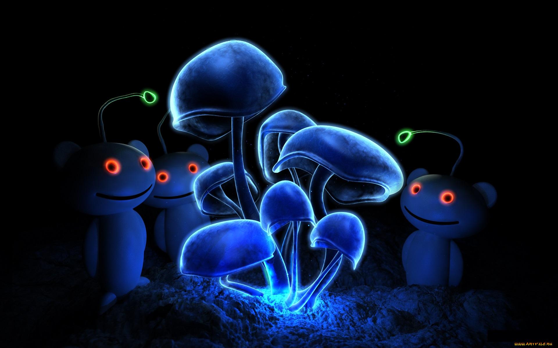 Неоновые грибы гифка